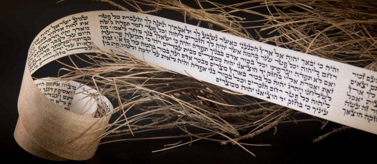 חובת ההידור והדקדוק  במצוות תפילין